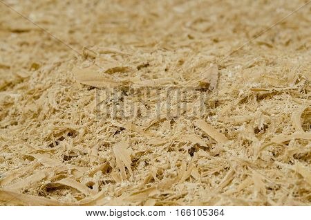 Focused detailed texture of many wood shavings