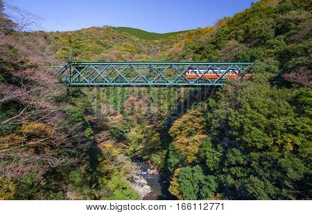 Beautiful mountain landscape with railway bridge and train in autumn season at Hakone town Japan