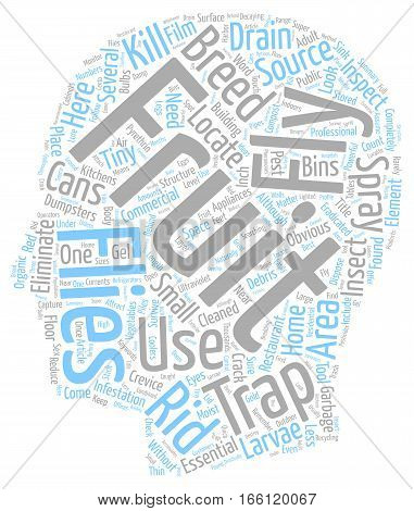 How to Get Rid of Fruit Flies text background wordcloud concept