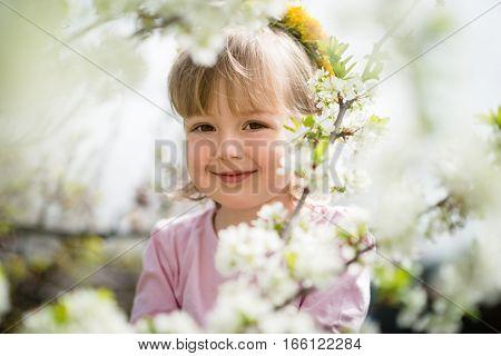 Portrait of little girl enjoys among blooming fruit tree flowers