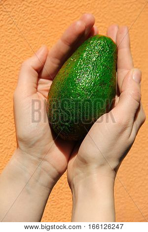 Green avocado in hand on an orange background.