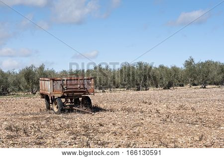 Old farm trailer on a fallow field. At the background an olive grove. Photo taken in La Fuencaliente, Ciudad Real, Spain
