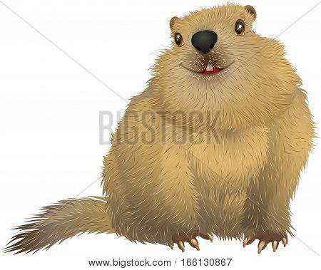 Happy cute Groundhog. Groundhog day. Spring is coming