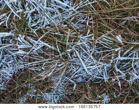 Background - Frost On The Ground