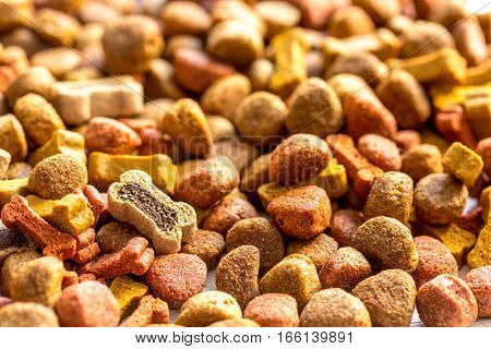 dry dog food in bulk close up.