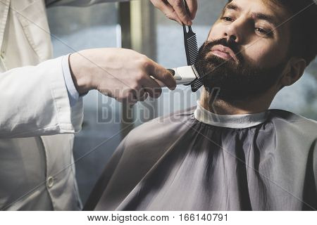 Businessman's Beard Being Trimmed