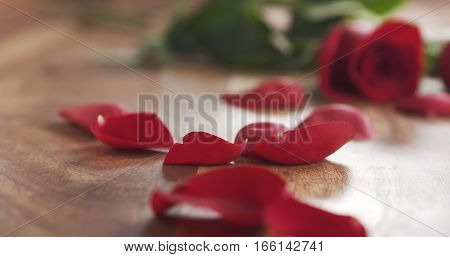 red roses with petals on old wood background, 4k photo