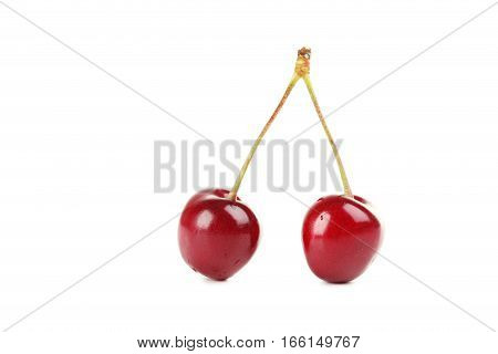 Ripe Cherries Isolated On A White Background
