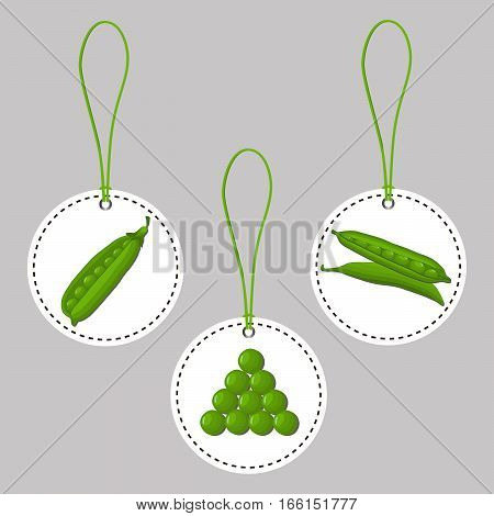 Abstract vector illustration logo for whole ripe vegetables round peas with green stem leaf,cut sliced on background.Pea drawing consisting of tag label,peel pip,twine rope,ripe food.Eat fresh Peas.