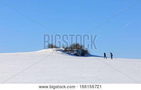 Unidentified Skier On The Horizon Winter Landscape