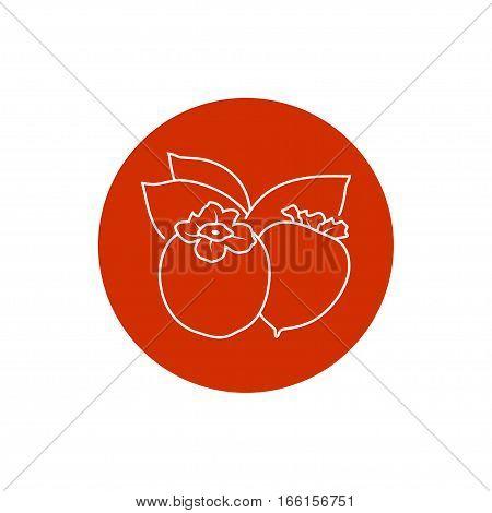 Persimmon Colorful Round Icon, Persimmon Fruit Icon