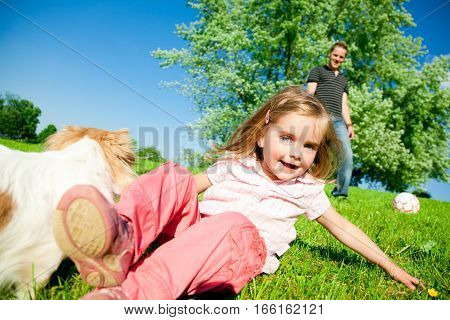 a four-year old girl is playing with her father and her puppy on a green meadow.
