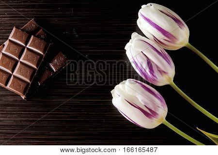 Tulip And Chocolate On Wooden Background