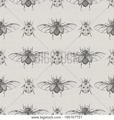 Beetles seamless pattern. Vintage hand drawn scarabs insects and ladybugs background