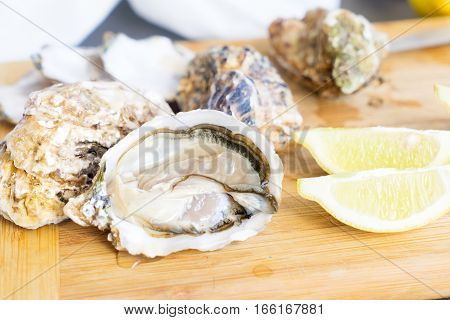 Raw oysters shells - one open and closed ones with lemons slices