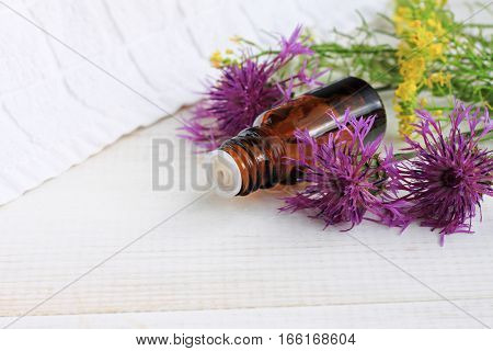 Herbal remedy. Essential oil bottle, flowering medicinal plants, white wooden background.