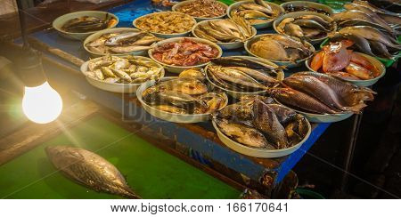 Fresh saltwater fishes displayed on white plastic bucket photo taken in Jakarta Indonesia java