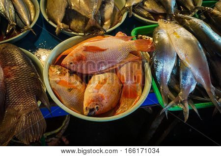 Freshwater fish sold at traditional market photo taken in Jakarta Indonesia java