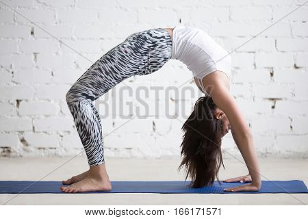 Young attractive woman practicing yoga on blue mat, standing in Bridge exercise, Urdhva Dhanurasana pose, working out wearing sportswear, pants, top, indoor full length, white loft studio background