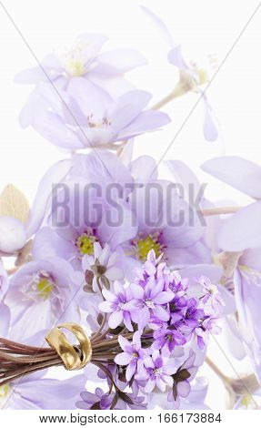 Two golden wedding rings and a bunch of forest violets in a white background
