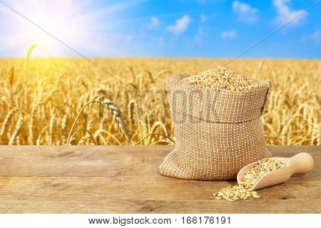 wheat grains in sack. Bag of grain on the background field of ripe wheat. Agriculture and harvest concept. Wheat field, blue sky, sunshine. Harvest with copy space area for a text