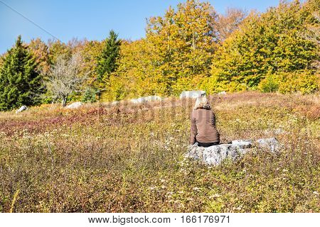 Young woman sitting on rock in meadow in dolly sods