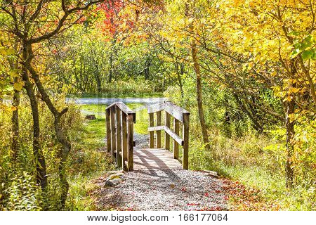 Small wooden bridge in autumn with foliage
