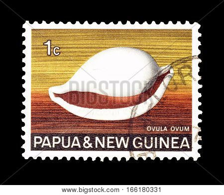 PAPUA NEW GUINEA - CIRCA 1970 : Cancelled postage stamp printed by Papua New Guinea, that shows Common Egg Cowry.
