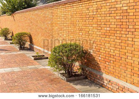 bush and the red brick wall Lumbini Nepal