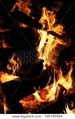 Closeup burning log fire in fireplace. Barbecue coal blazing flame
