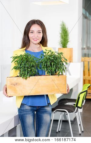 Green living. Attractive young businesswoman standing in modern loft office holding a box with plants. Environmental scientist or biologist at work. Student in biology and ecology. Eco concept