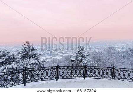 Snowy Forest In The Winter Season
