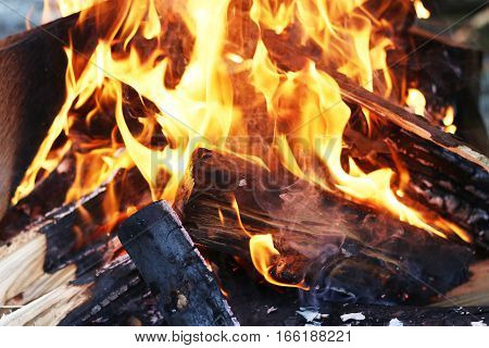Barbecue blazing log fire. Burning fireplace. Closeup flame