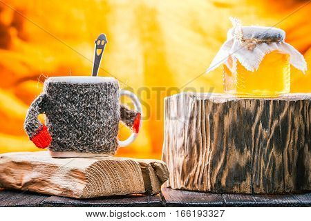 Tea mug wearing sweater and  jar of honey on rustic wood stands