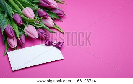 Greeting card, bouquet of beautiful flowers, buds of spring tulips, bow from satin ribbon, the gift set on a pink background