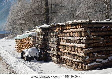 winter firewood under snow against the background of a mountain landscape