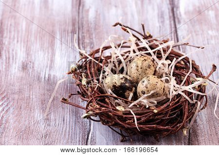 Three quail eggs in the nest for easter on wooden background