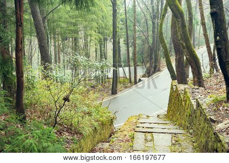 View of the asphalt road in the wet forest of Huangshan national park. China.