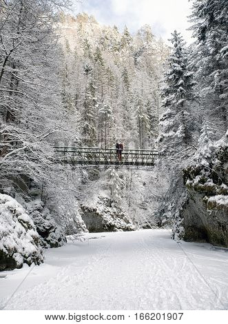 Frozen river Hornad in snowy forest at Slovak paradise. Hiker on bridge