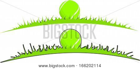 Tennis ball in the grass in two variants