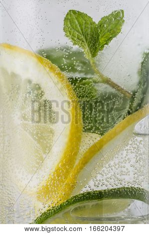 Refreshing Citrus and Mint Sparkling Water to Stay Hydrated