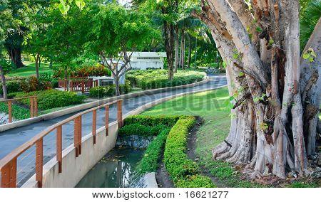 exotic bridge with green surroundings