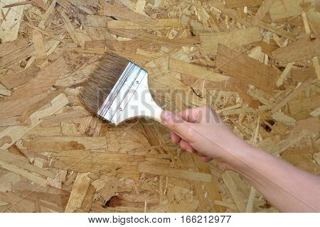 Woman's hand paint brush lacquered wooden wall. Horizontal photo close up