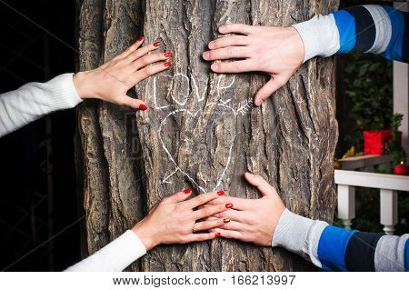 Hands of man and woman holding the tree with a love sign on St. Valentine's day
