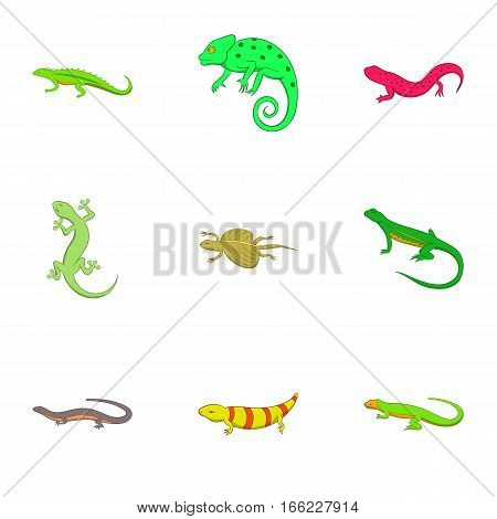 Amphibian icons set. Cartoon illustration of 9 amphibian vector icons for web