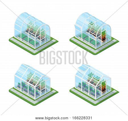 Glass greenhouse isometric set with growing agricultural products and colorful flowers isolated vector illustration