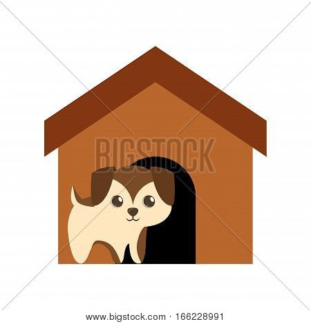 puppy adorable pedigree brown house vector illustration eps 10