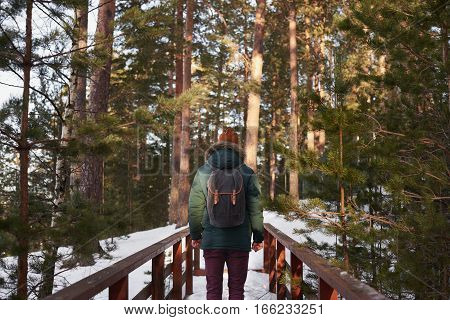Traveler in the forest. Man stay on wooden bridge across the mountain river and look to the trees. Tourist explore countryside land away of gig city.