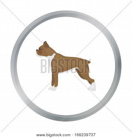 Boxer dog vector illustration icon in cartoon design - stock vector