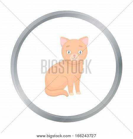 Cat icon of vector illustration for web and mobile design - stock vector